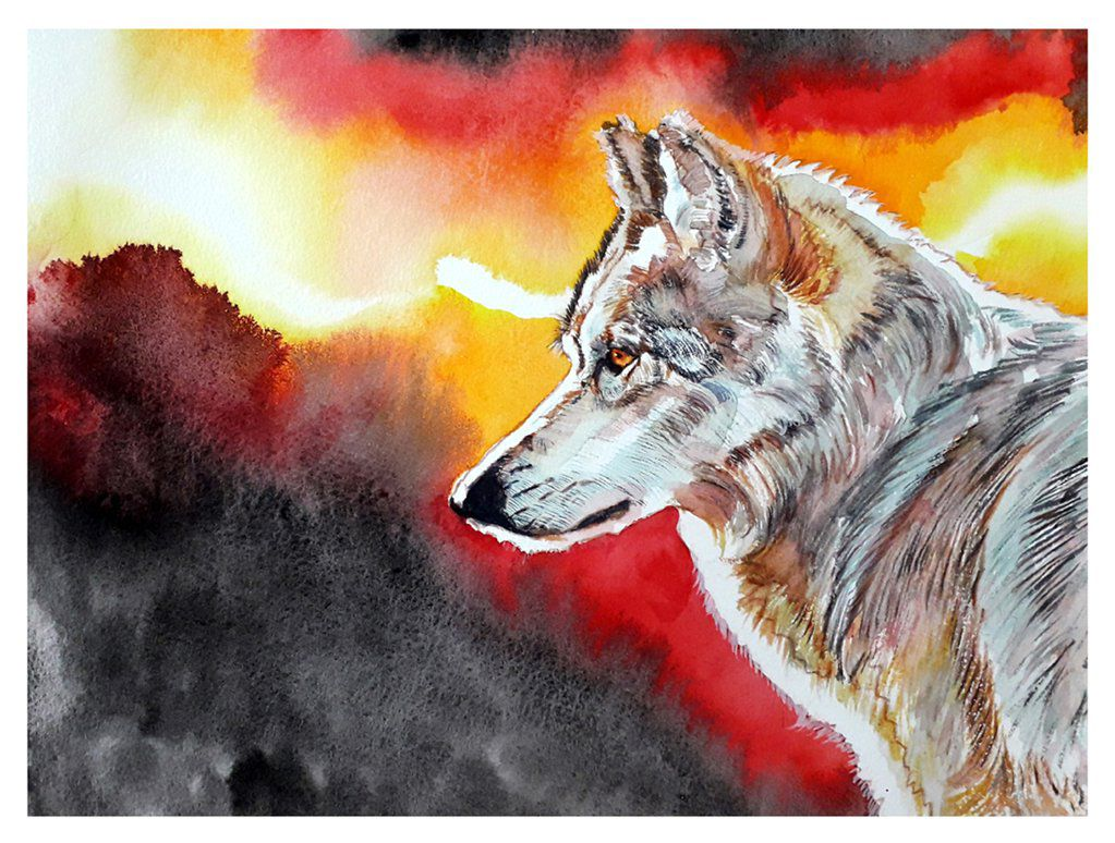 Loup - Grey Wolf - Watercolour on Arches paper -  12' X 16' (31 cmX 41 cm)