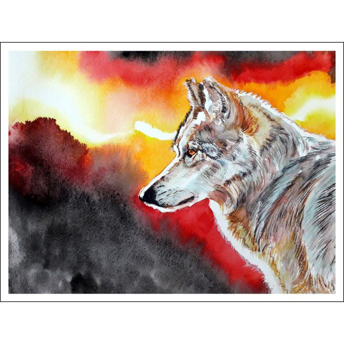 Grey Wolf - Numbered HD Print - 23 cm X 32 cm - 9 in X 12,5 in - Cold pressed Paper 140 lb